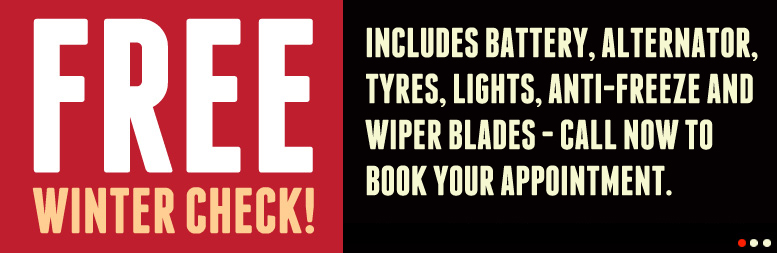 Free Winter Check - Includes battery, alternator, tyres, lights, anti-freeze and wiper blades - call now to book your appointment